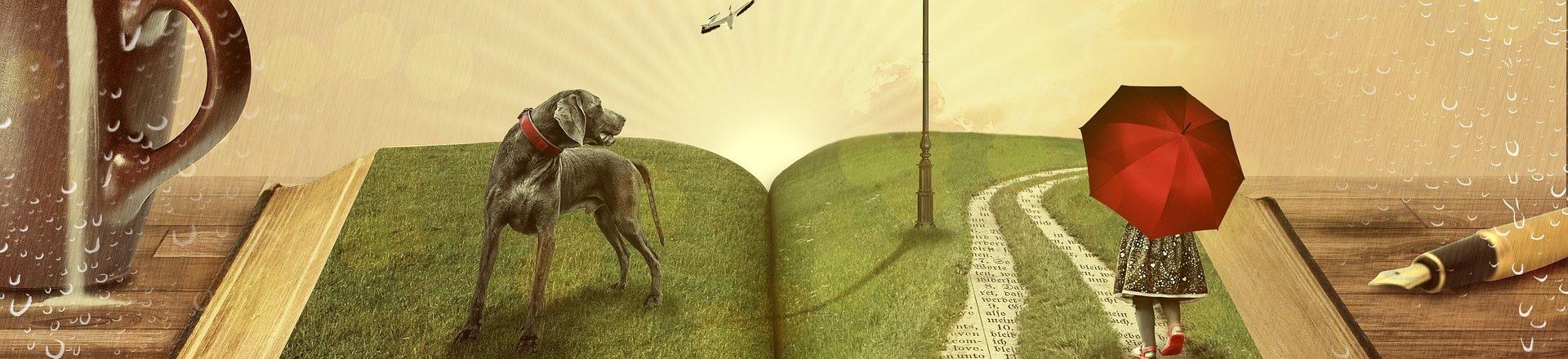 Dream Meadow Press